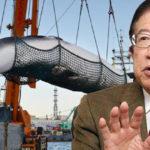 武田邦彦 IWC脱退!捕鯨問題で反日を作る日本人の嘘!シーシェパードの収入源を暴露!